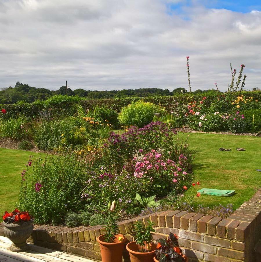 Overton Gardening Services 2.jpeg