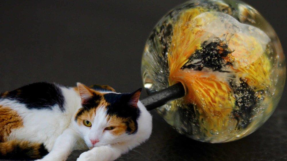 Tortoiseshell Cat Beads