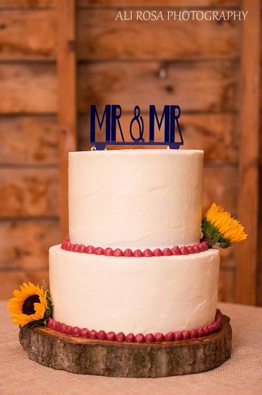 Boston-wedding-photographer-Inn-at-West-Settlement-Catskills72.2.jpg