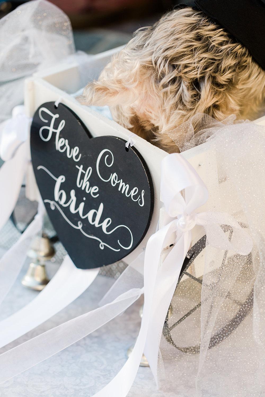 Mr. C Beverly Hills Wedding_Valorie Darling Photography-4049.jpg
