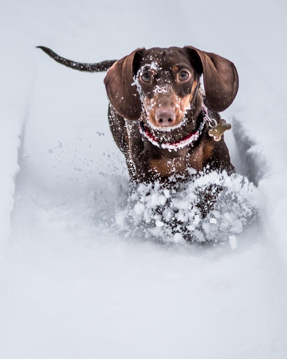 UG Snow Day-8.jpg