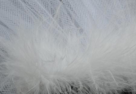 White marabou