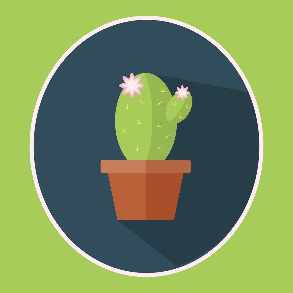 Cactus Flat Design