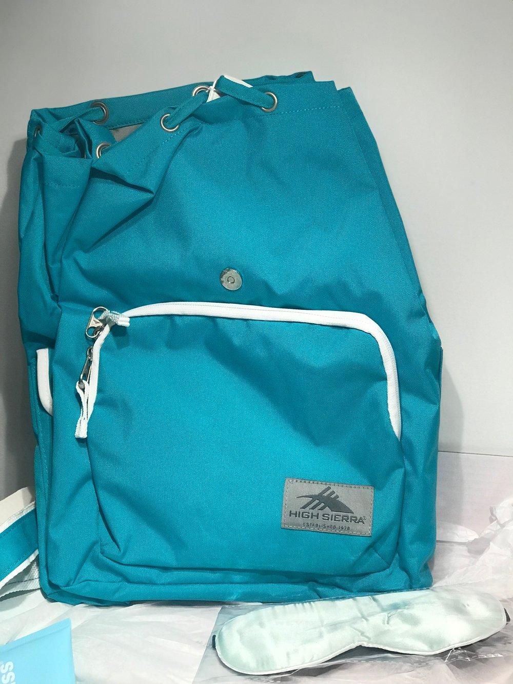High Sierra Back Pack