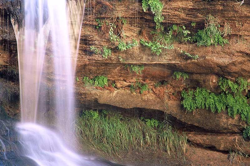 #0101 Waterfall, Pine Creek (Up Close) (Zion)