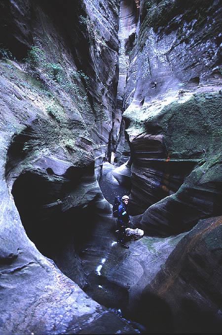 #2002036 Scott in Heaps Canyon (Zion)