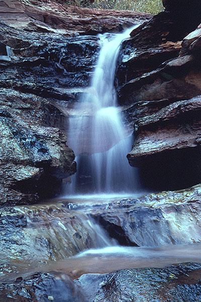 #9810 Taylor Creek Waterfall Closeup (Zion)