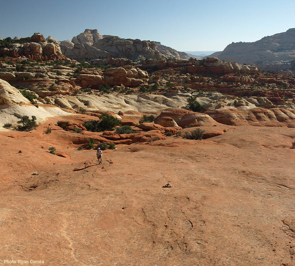 Trail on the slickrock, out toward the arch. (Cassidy Arch)