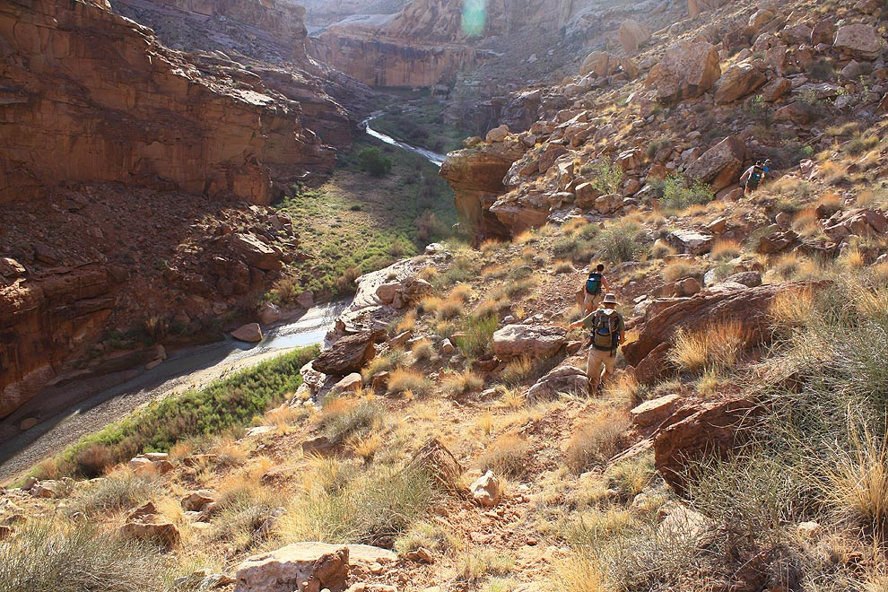 Hiking the miner's trail above Muddy River