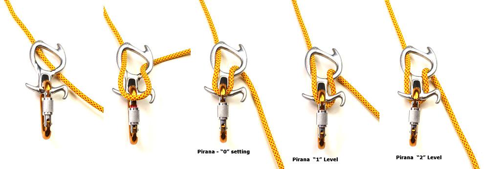 pirana01.jpg