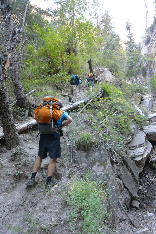 The Exit - (Top half)From the bottom of Upper Pipe Spring Canyon, called the