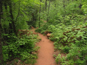 Middle_Fork_Trail.jpg