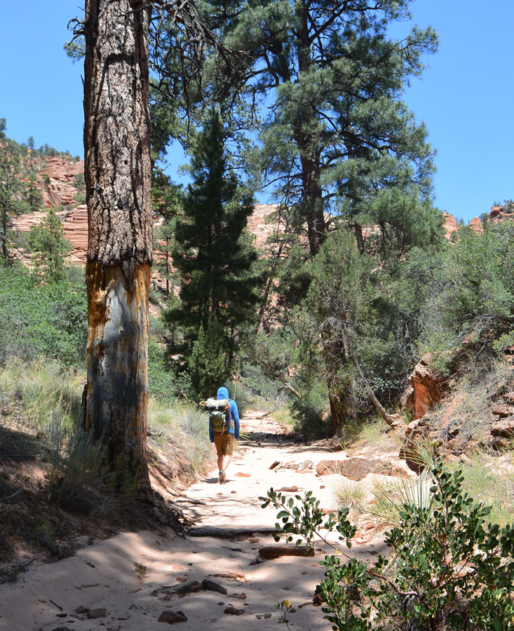 Hiking up the exit canyon