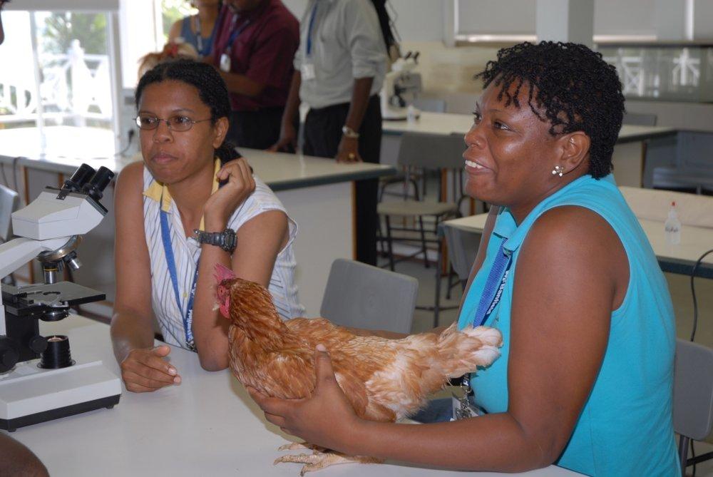 Grenada, 2006