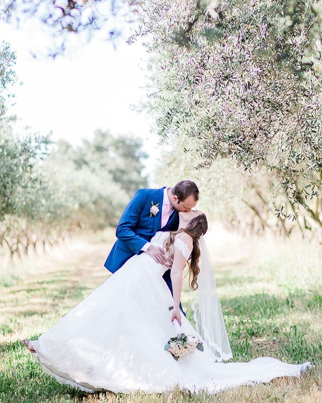 This wedding!!!! 😍😍 Olive Trees, Willow Trees, the venue had it all!!! I haven't even looked at all the pictures yet and had to post this sneak peek of Lara & Luke's Wedding ❤️ . . . . . #melissaenaultphotography #sacramentoweddings #wolfeheightseventcenter #sacramentoweddingphotographer #theknot #vacavilleweddingphotographer #fairfieldphotographer #oliveorchard #vacavillephotographer #napaweddings #napaphotographer #napaweddingphotographer #bayareaphotographer #bayareaweddings #bayareaweddingphotographer #californiaweddings #californiaweddingphotographer #buildandbloom #mastinlabs #brideandgroom #lukeandlaraforever