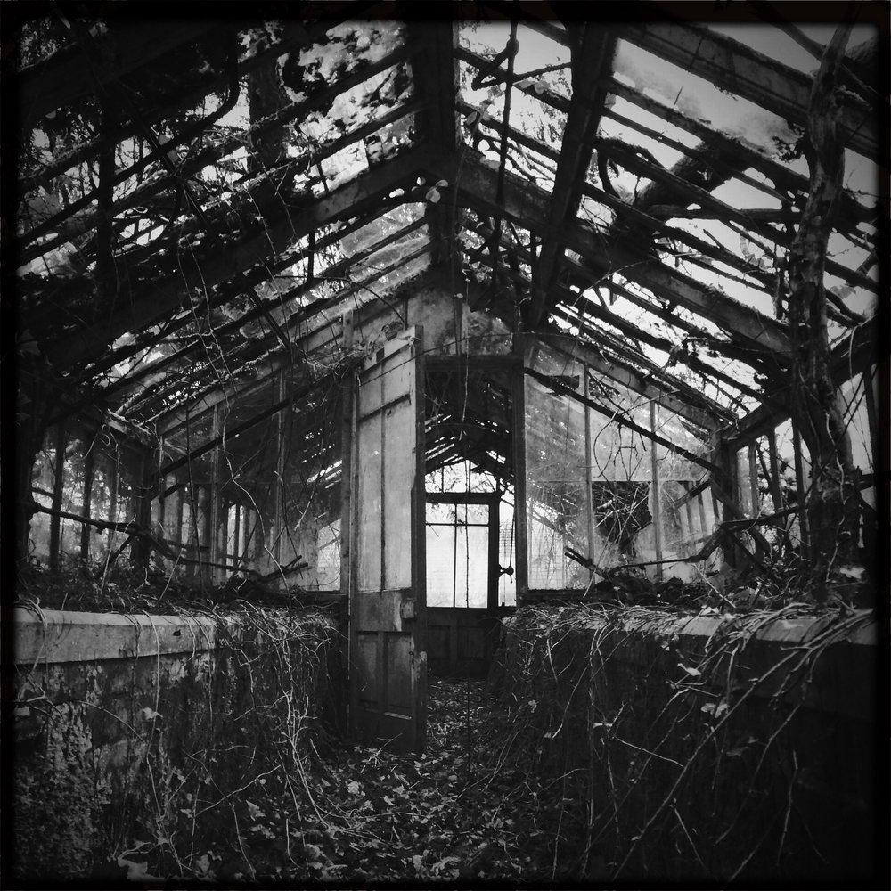Hipstamatic greenhouse