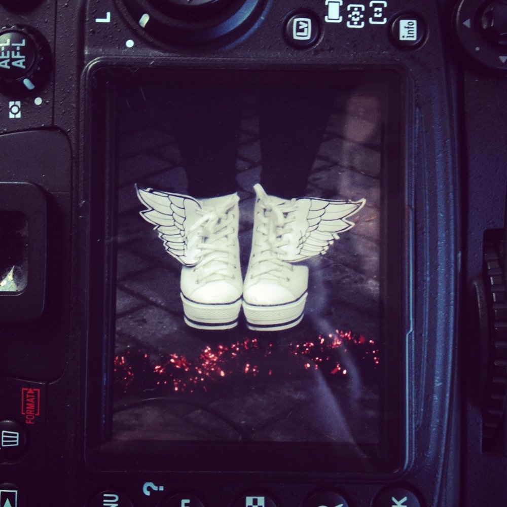 White winged trainers