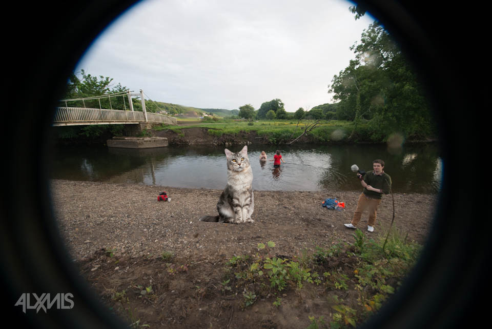 From the riverbanks - shooting through the waterproof casing … and a giant cat!