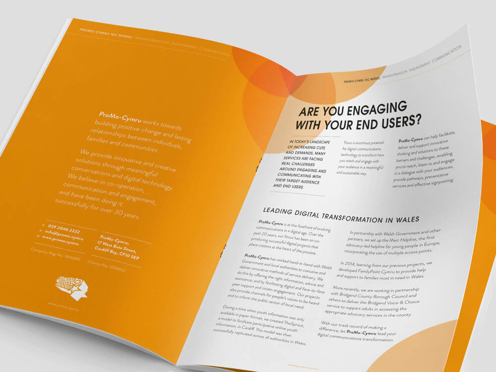 ProMo-Cymru Third Sector brochure and website design and development