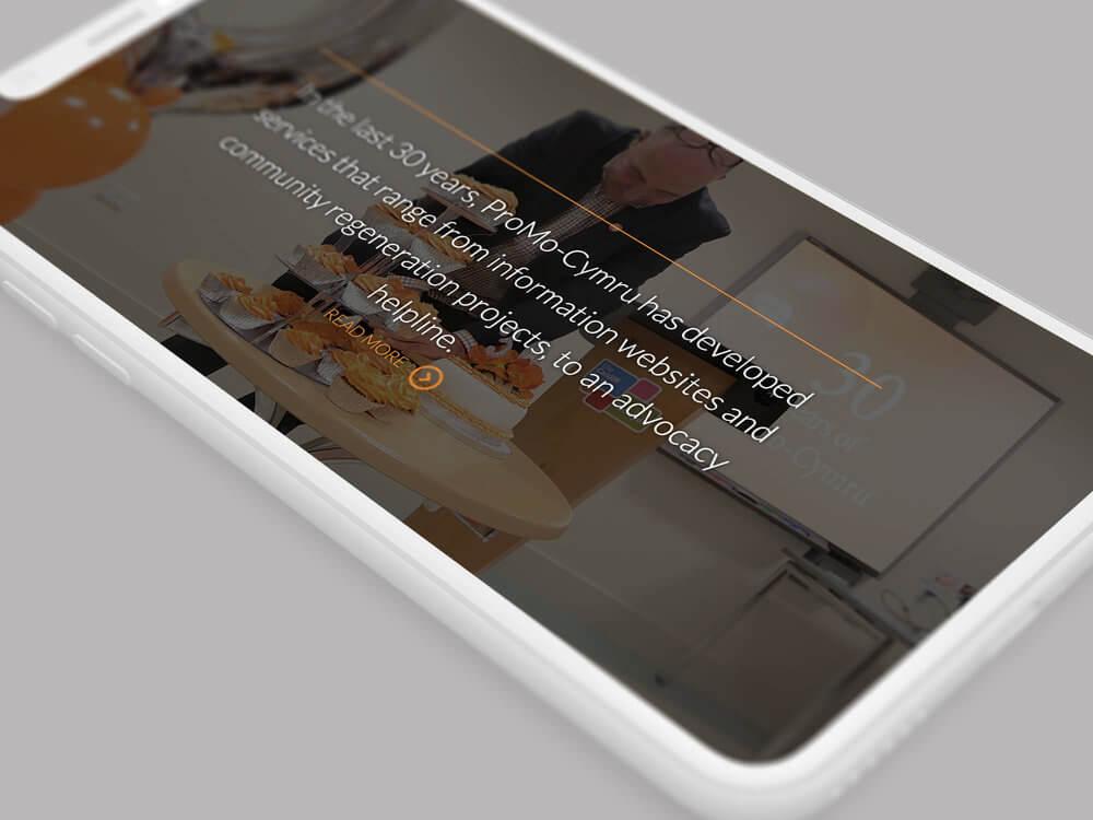 ProMo-Cymru Third Sector website design and development
