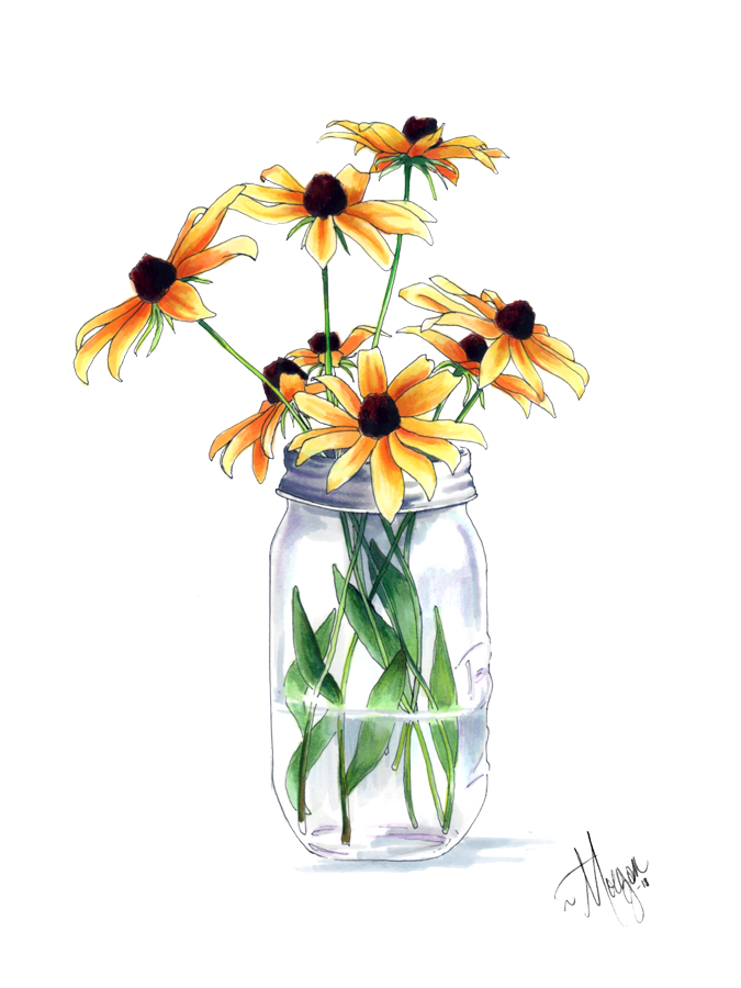 black-eyed-susan-illustration-morgan-swank-studio.jpg