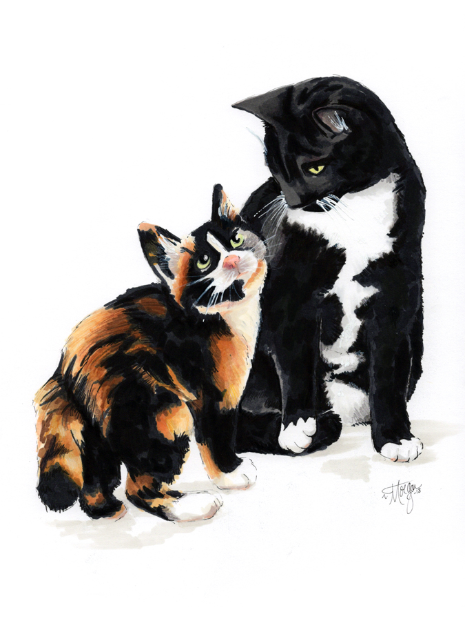cat-friends-illustration-morgan-swank-studio-for-web.jpg