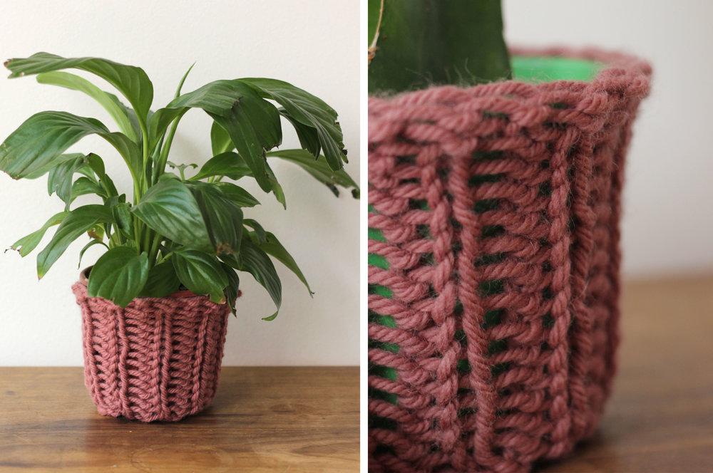 a primeira foto foi com o vaso da planta com folhas comidas pelos gatos. a segunda com um vaso do mesmo tamanho de um cacto, que de longe ficou muito feia, mas que no detalhe ficou boa. :)