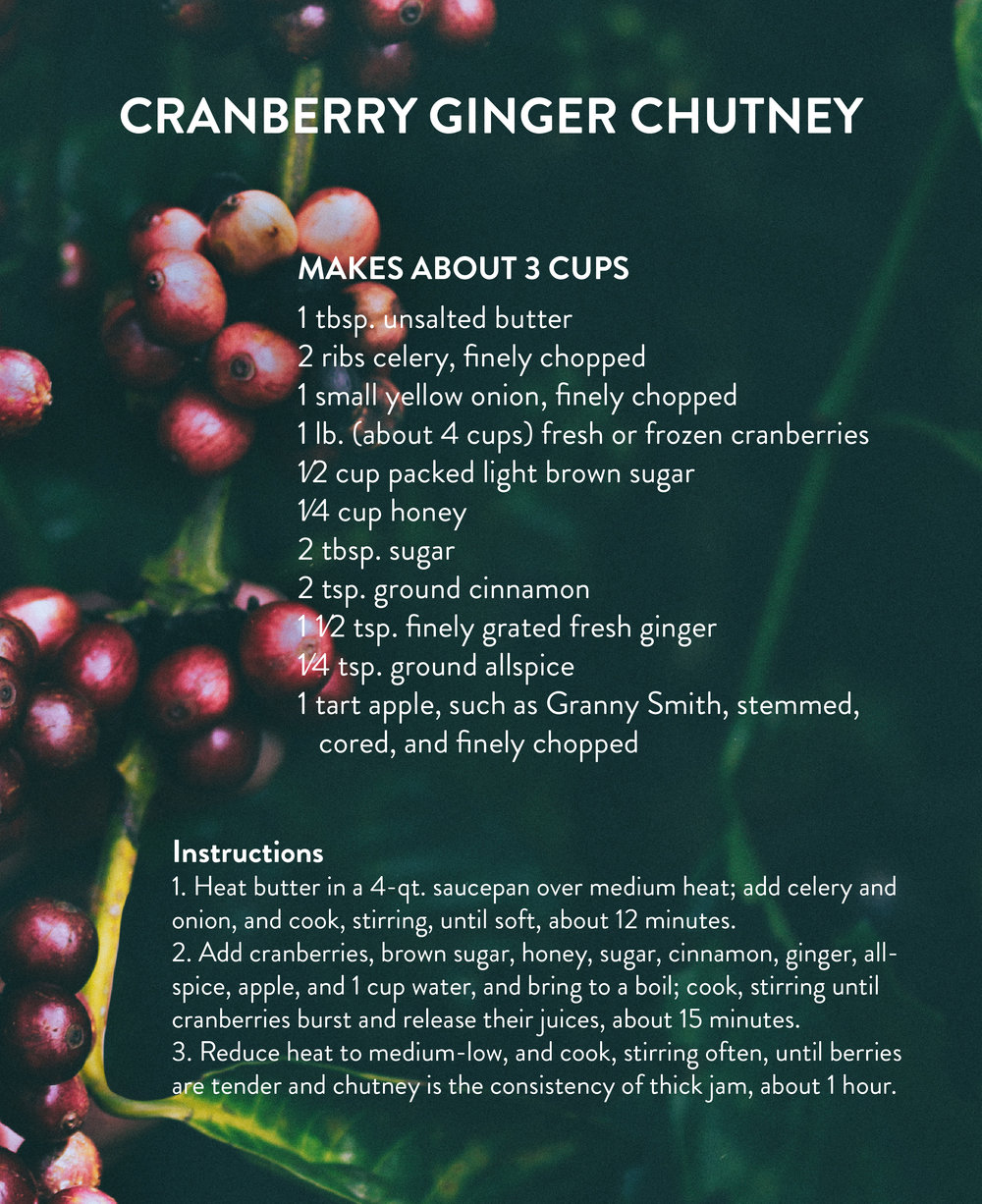 HH-Thanksgiving_CranberryChutney-instructions.jpg