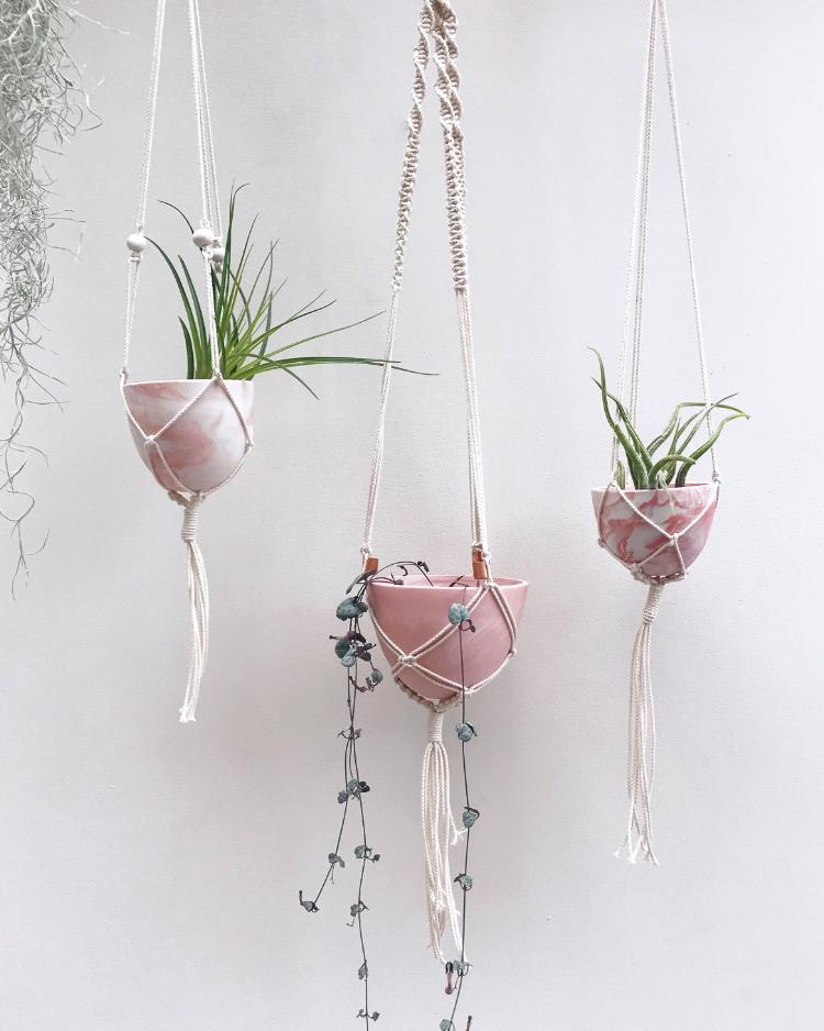 Mini Plant Hangers £33