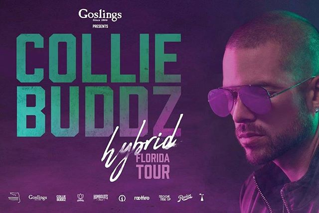 Tonight @realcolliebuddz @roots_almighty and @losreefers  Come out support the music! #rootsalmighty #reggaeparty #warnthechildren #colliebuddz #deutermanproductions