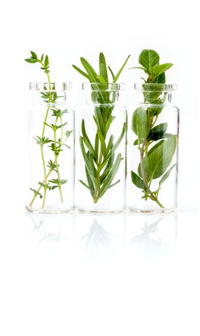 botanicals.jpg