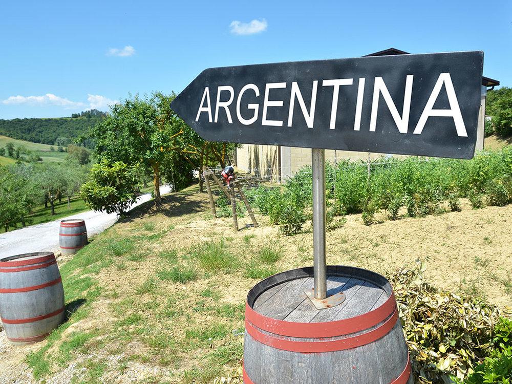 sitemgr_argentinawine2.jpg