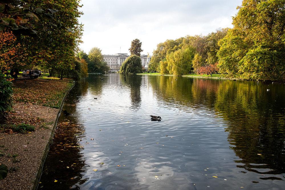 parcul Saint James, de lângă Palatul Buckingham
