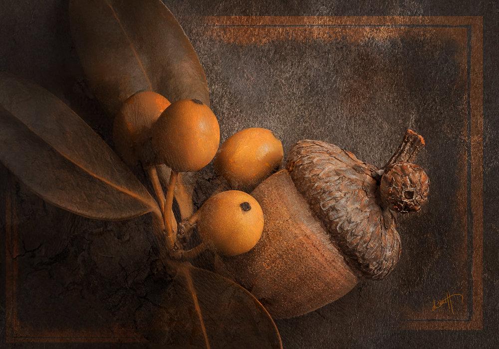 acorn & Berries -