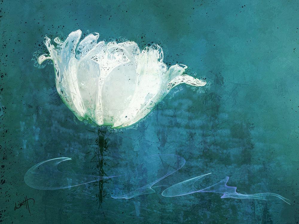 denise-smith-first-tulip.jpg