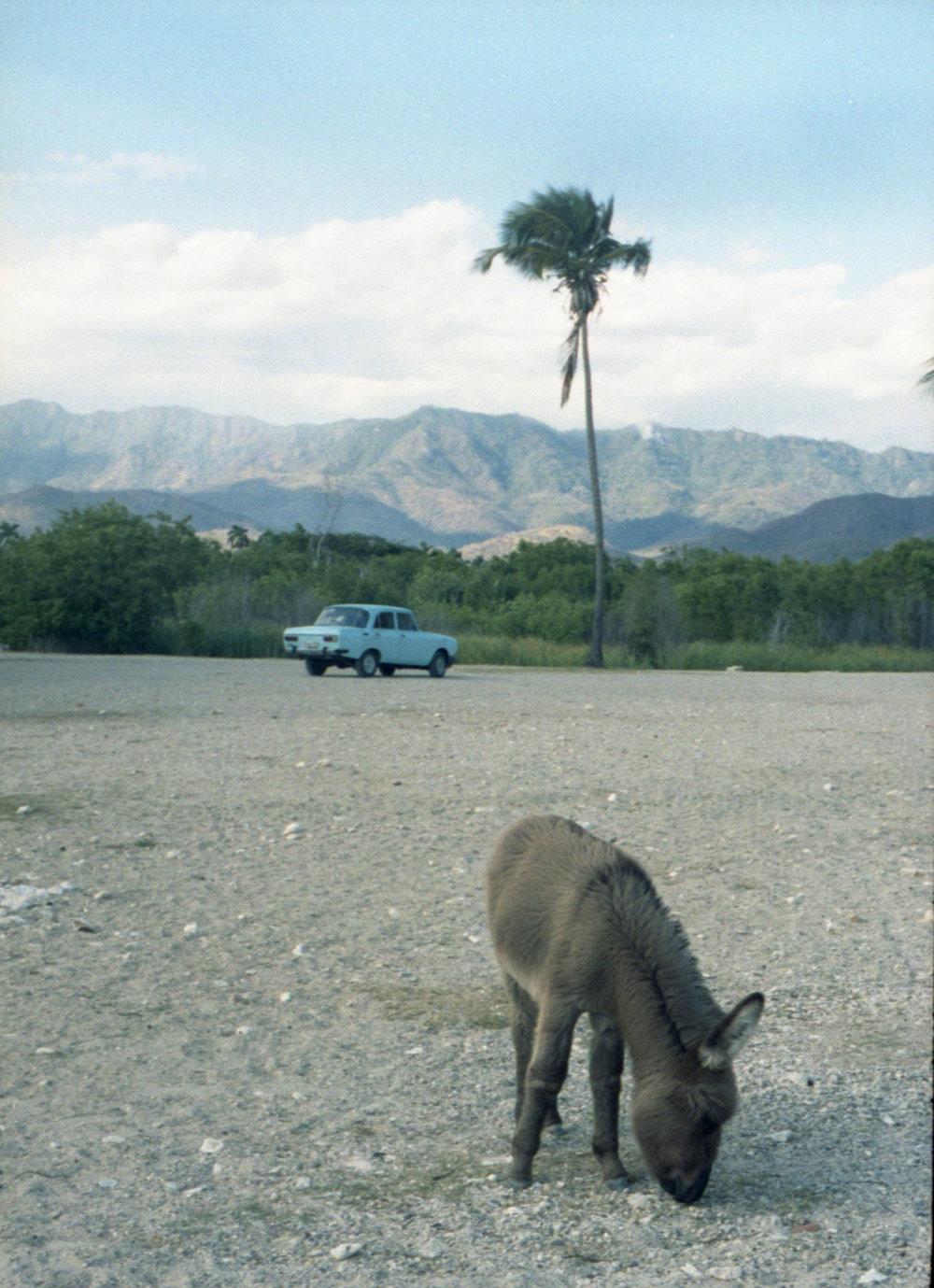 12 - Marija Vidovic, Cuba.jpg