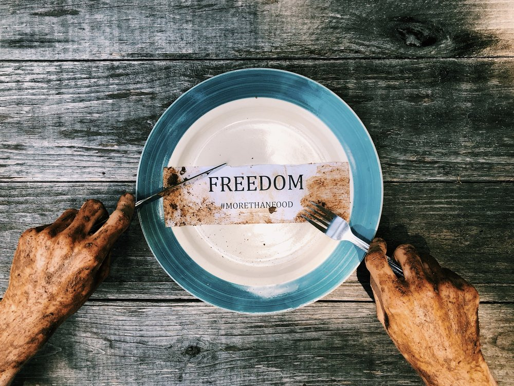 Plate - freedom.jpg