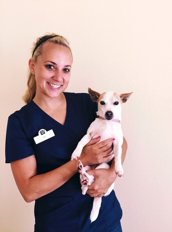 Dadiva Garth -  Veterinary Assistant