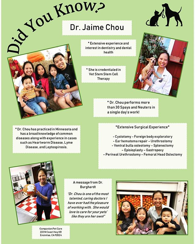 Come in to see Dr. Jaime Chou!! She is here Wednesday, Thursday, and Fridays to take care of your furbabies. 🐾💉🐶