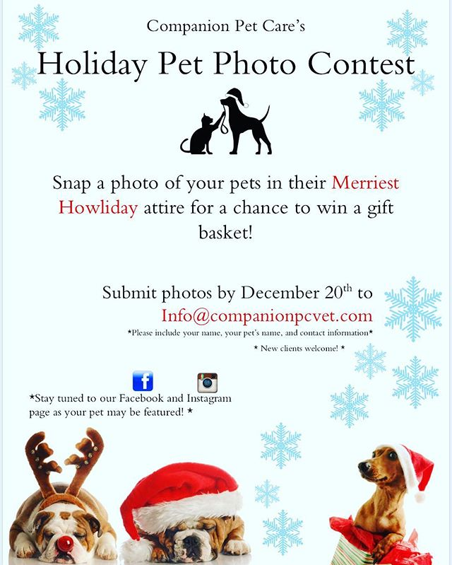 Snap a photo of your pets in their best Howliday attire! 🐾🎄🐶 We will be giving a gift basket away to the most festive and creative photograph!  Happy Holidays from Companion Pet Care!