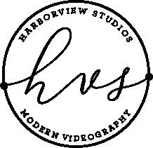 HVS modern videography