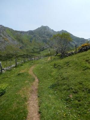 HikingSomeido.jpg