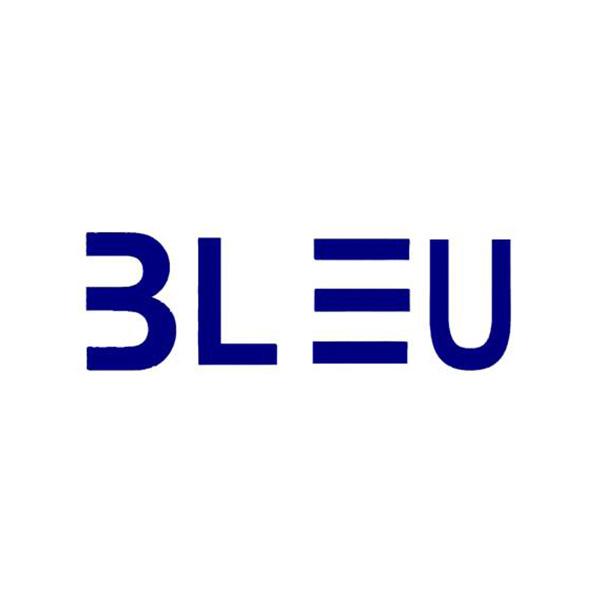 bleu_web.jpg