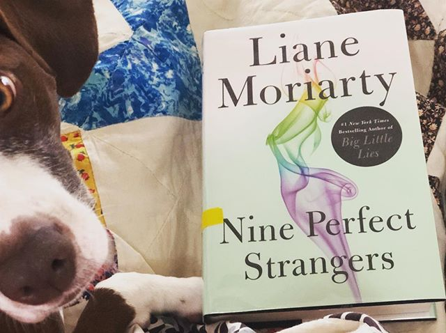 There is a light layer on snow on the ground outside... which makes for a perfect day of READING! Honey and I are going to sit here with our quilt next to the fire and read the newest Liane Moriarty from the @springdalelibrary. What are YOU reading today?? 📖