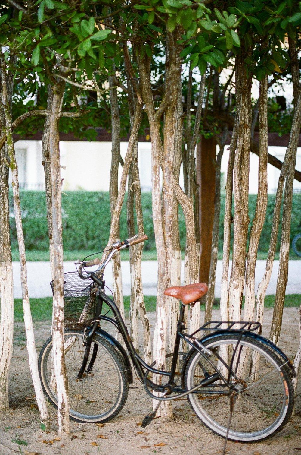 Mexico_Destination_Photographer_Tessie_Reveliotis-24.jpg