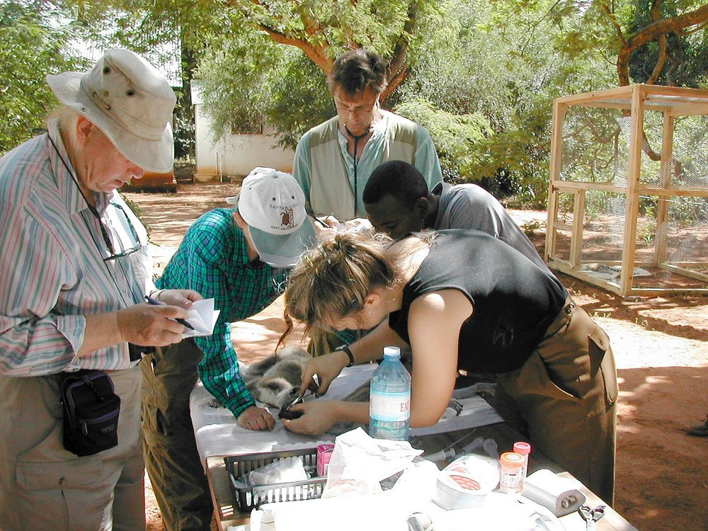 Team assessments incl tick removal.jpg