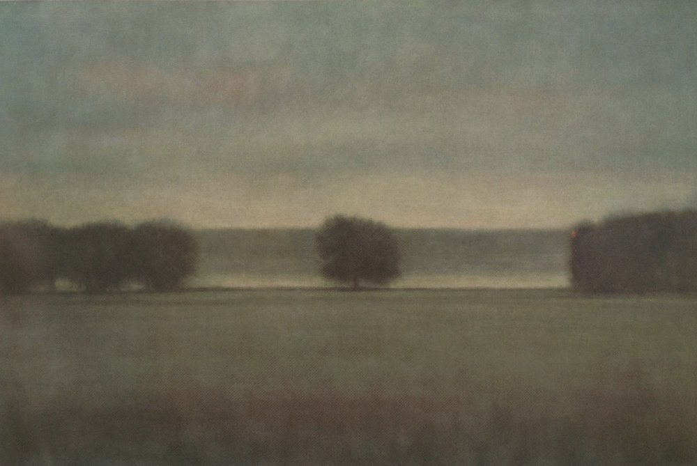 Morning Grove  - 48 x 72 inches - Oil on Canvas - 2006. Private Collection
