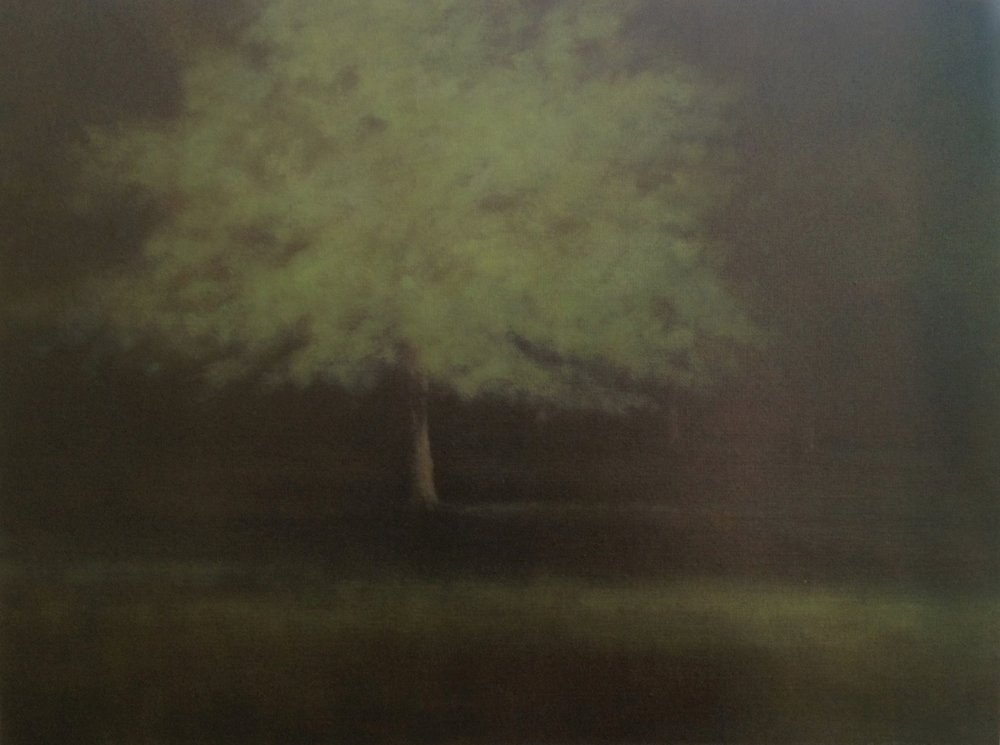 Summer Woods  - 30 x 40 - Oil on Canvas - 2006. Private Collection