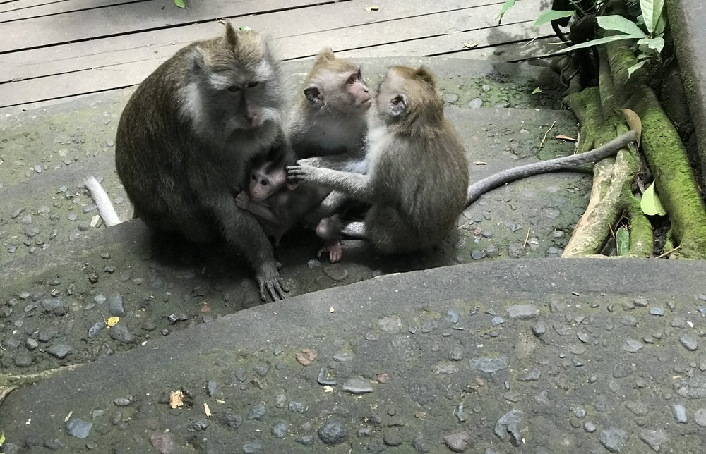 Seated with two juveniles, a mother holds her baby close.