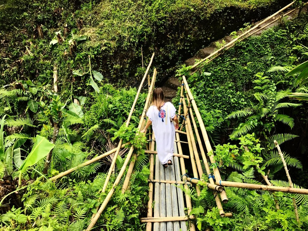 Bamboo Bridge Tegallang Rice Terrace Ubud Bali